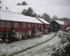 Klicka för att läsa 'Skåne lamslaget av vit och kall